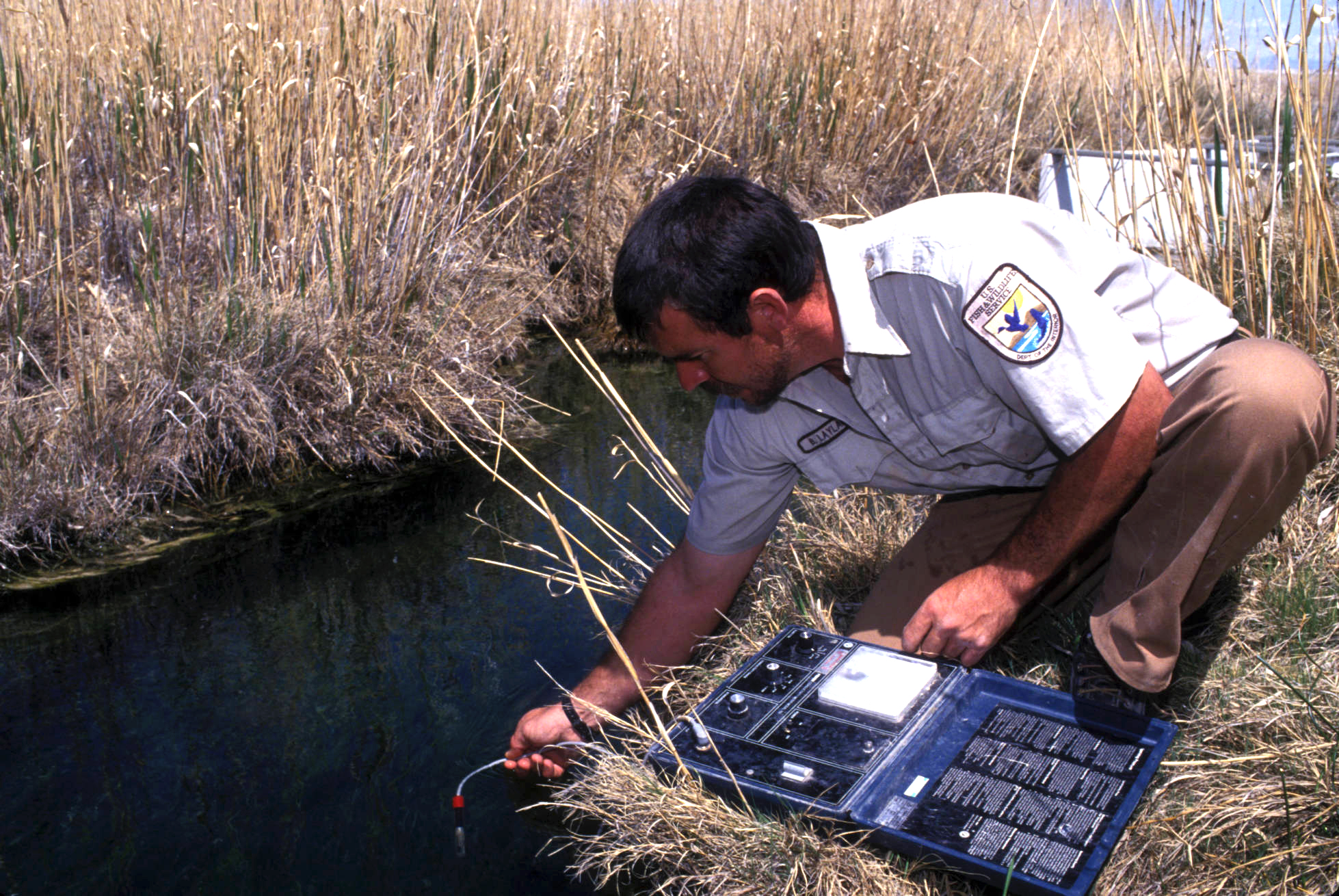 A federal trustee staff member monitoring stream water quality after restoration.