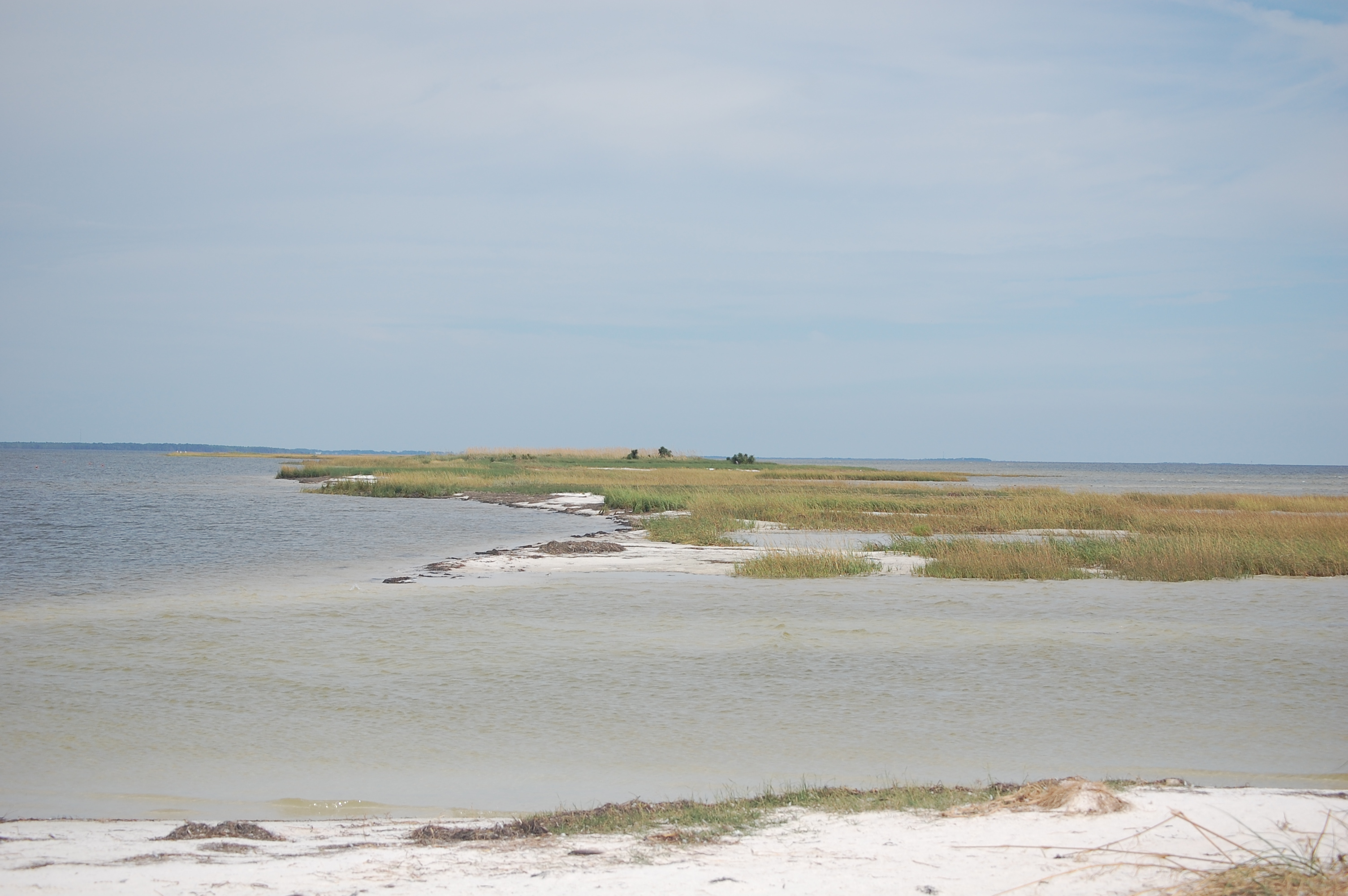 Lanark Reef 6-mile stretch of islands, seagrass and shallow sandbars in Florida's Gulf Coast. Credit: FWC