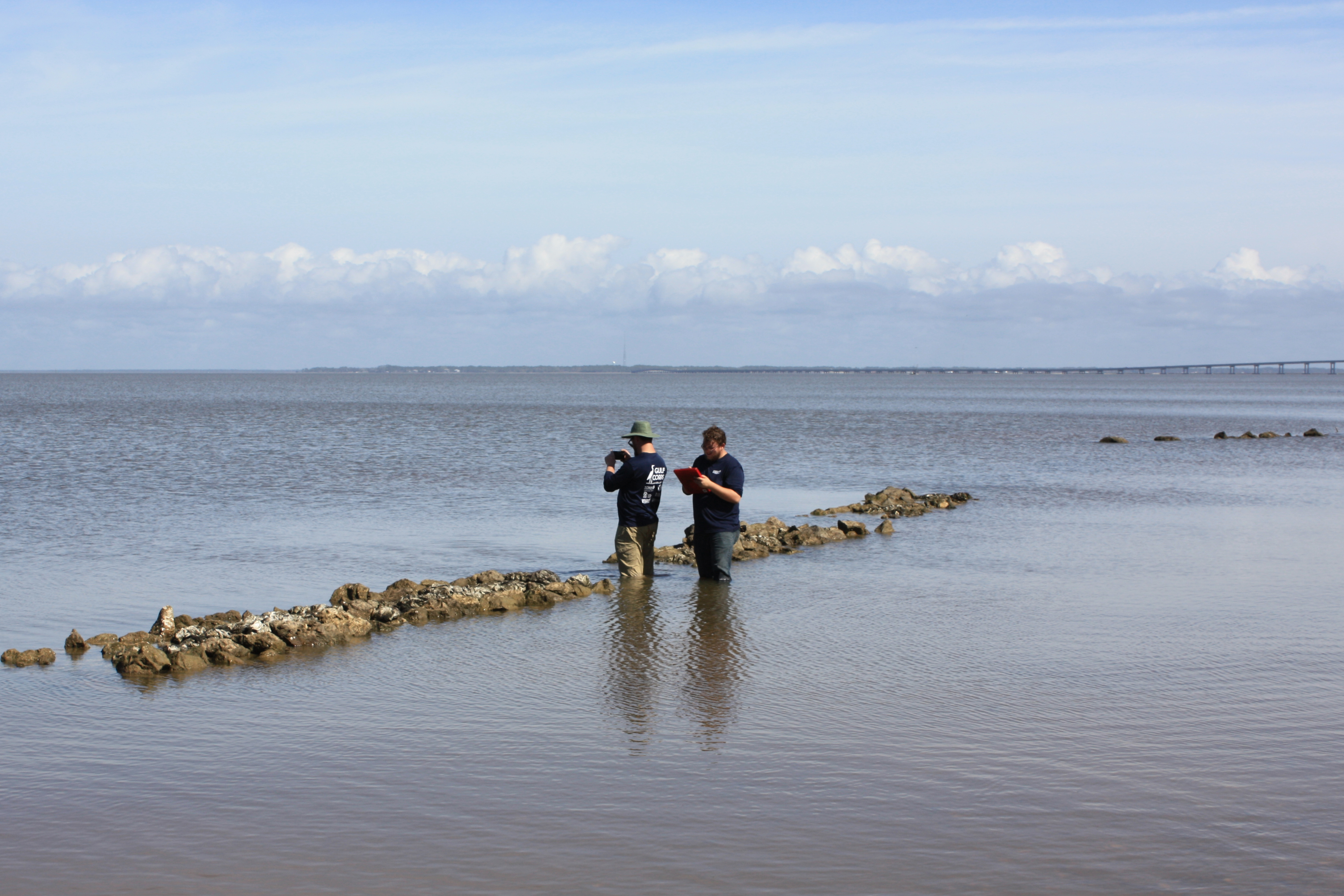 Two scientists wade in water next to oyster reefs with measurement tools and a clipboard.