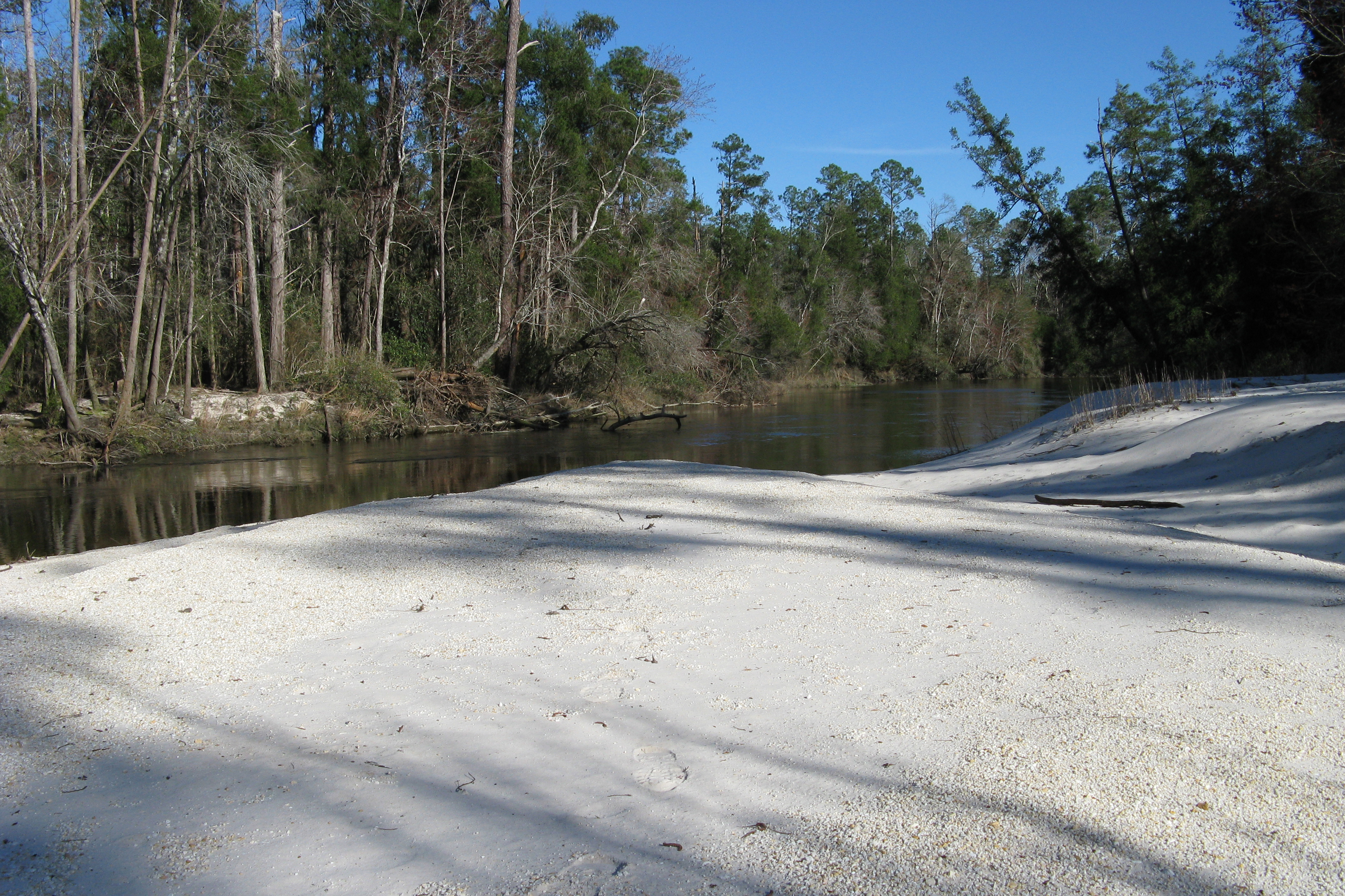 A sandy beach along the Perdido River in Alabama. Trees line the opposite bank.