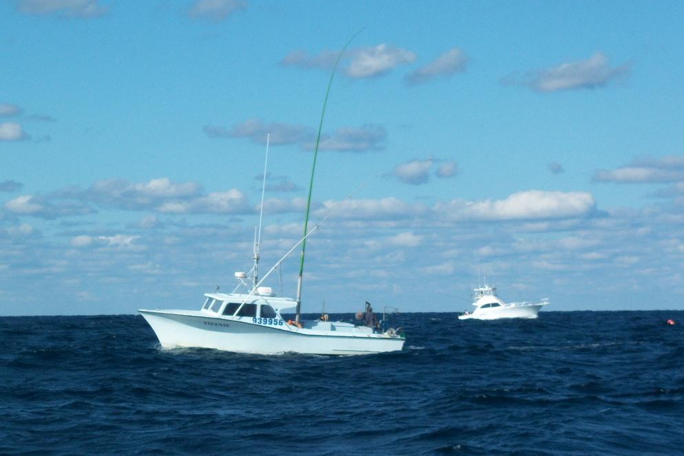 green stick fishing vessel
