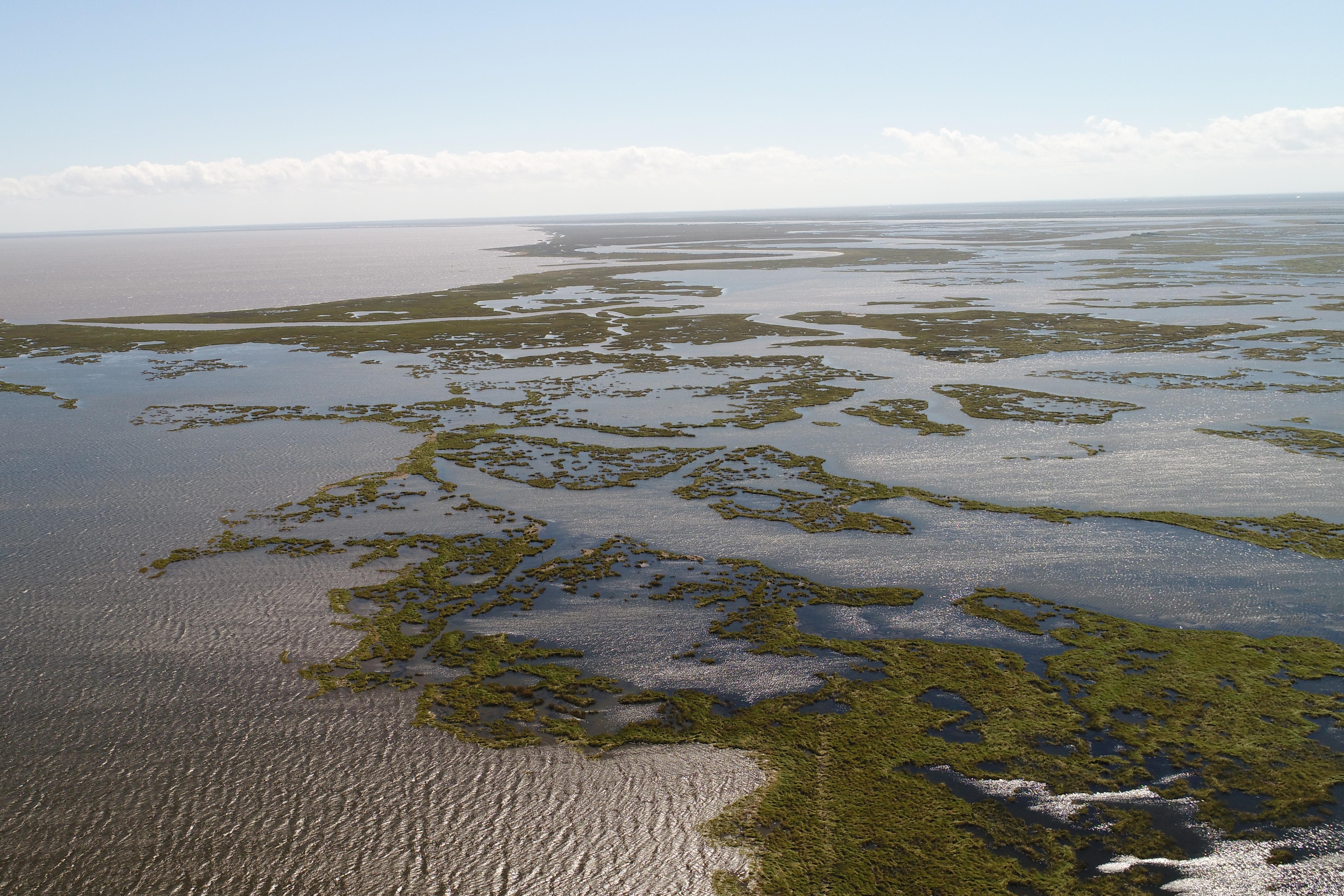 Aerial view of the Lake Borgne area of Louisiana's Barataria Basin.