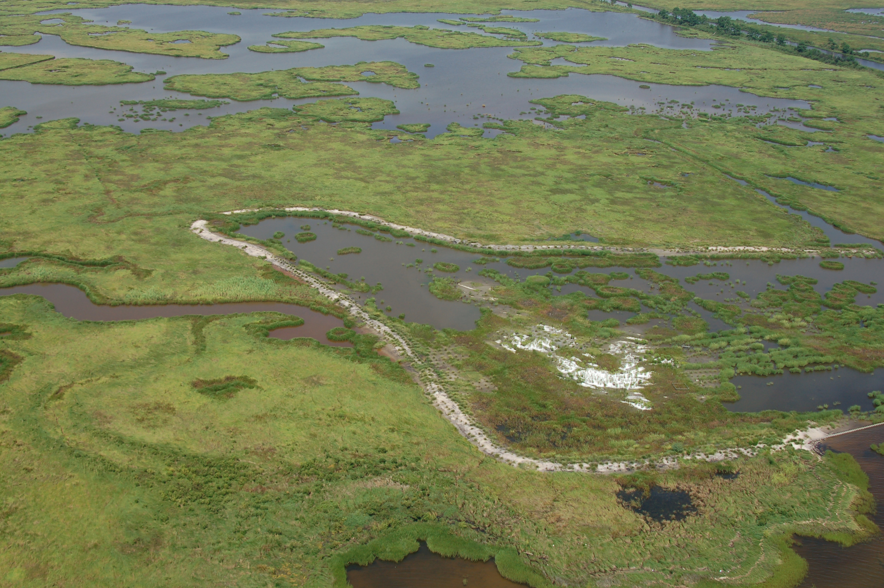 A Louisiana marsh restoration project at Goose Point/Point Platte. Image USFWS