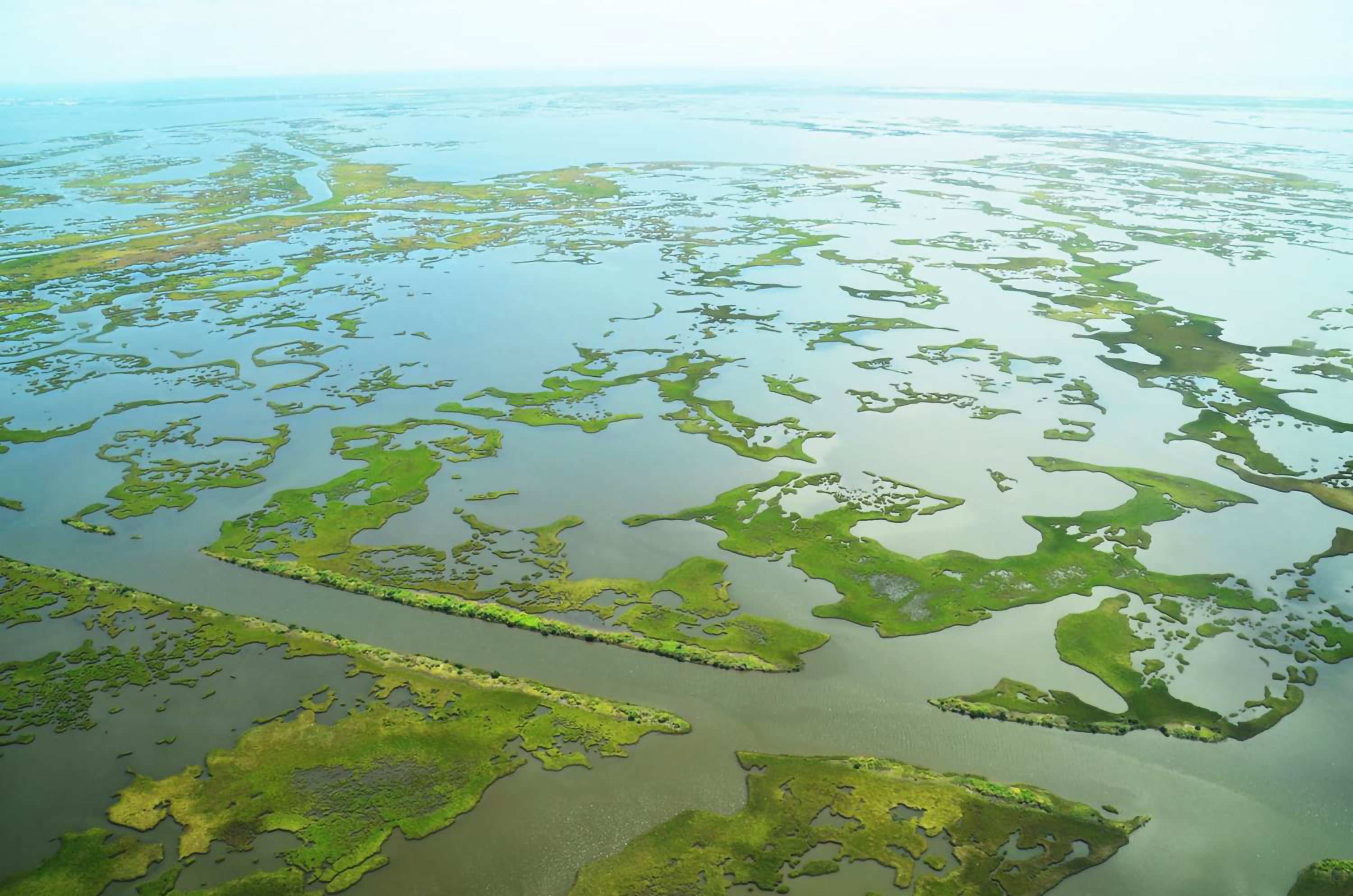 Aerial view of parts of the Barataria Basin, where wetlands have disappeared for decades.