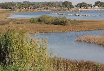 Pensacola living shorelines