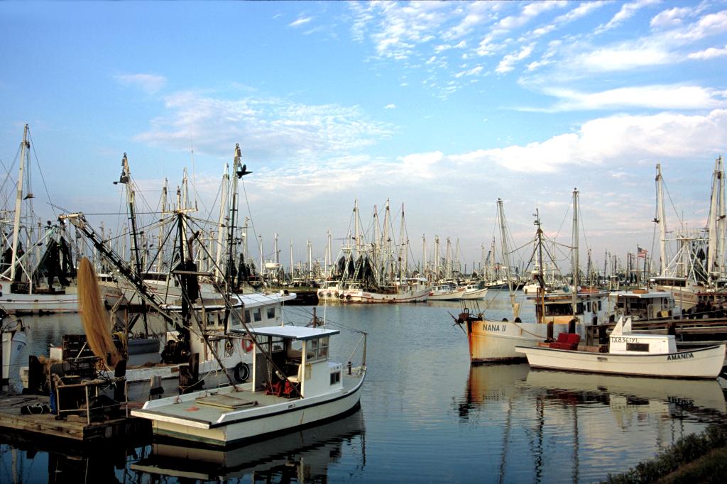 Texas shrimping boats