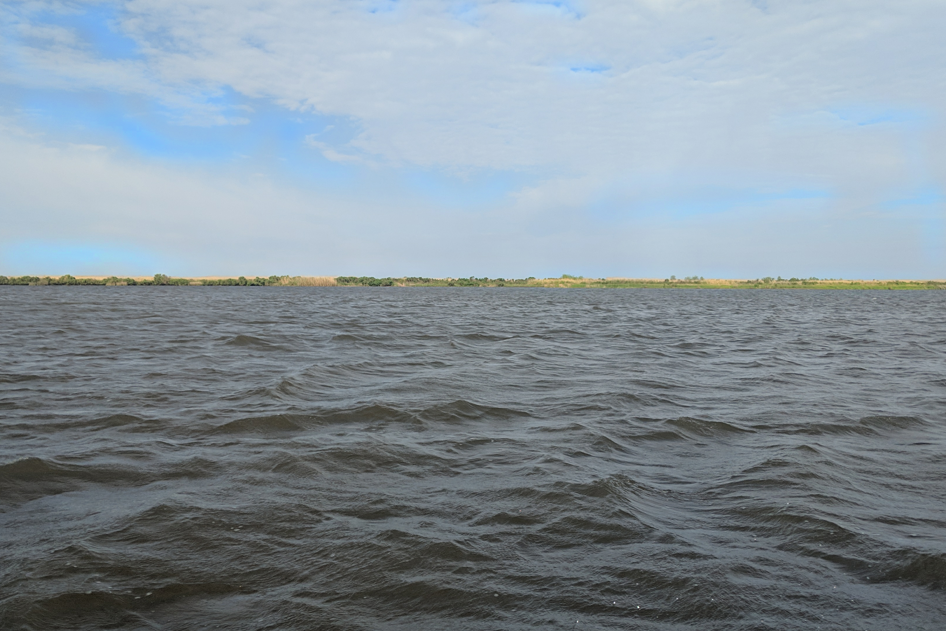 Open water of Barataria Bay with a strip of dunes and beach in the background.