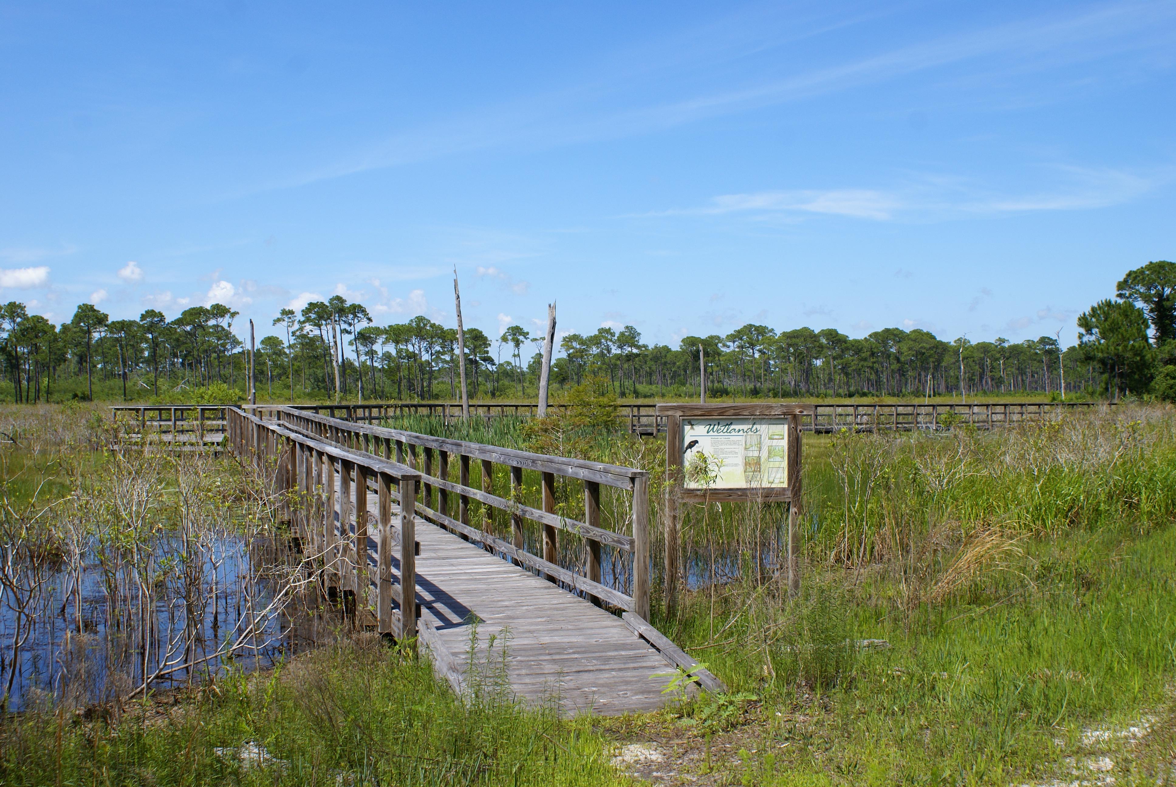 A boardwalk meandering through Alabama wetlands, with an interpretive sign.