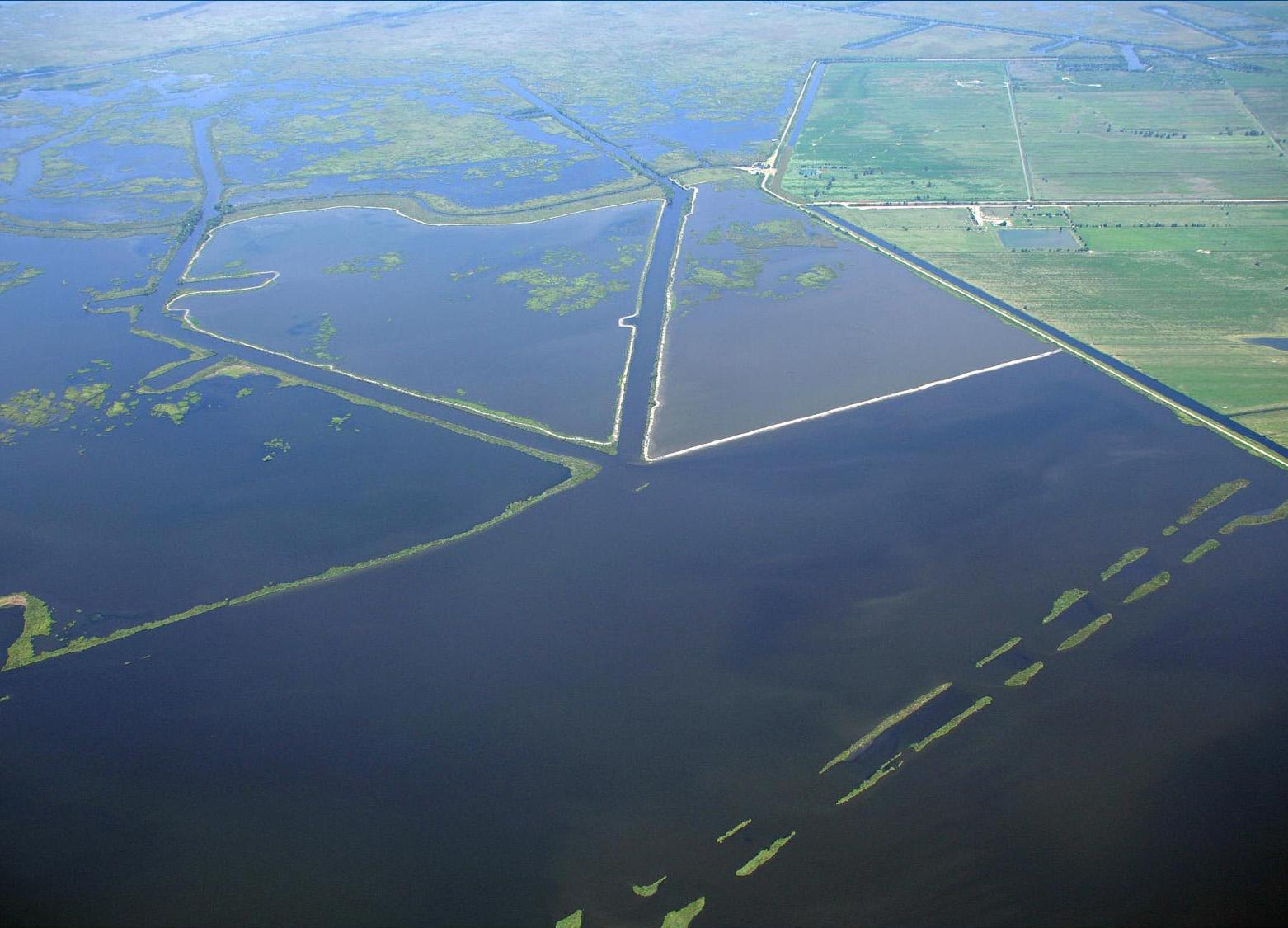 bayou dupont sediment delivery system