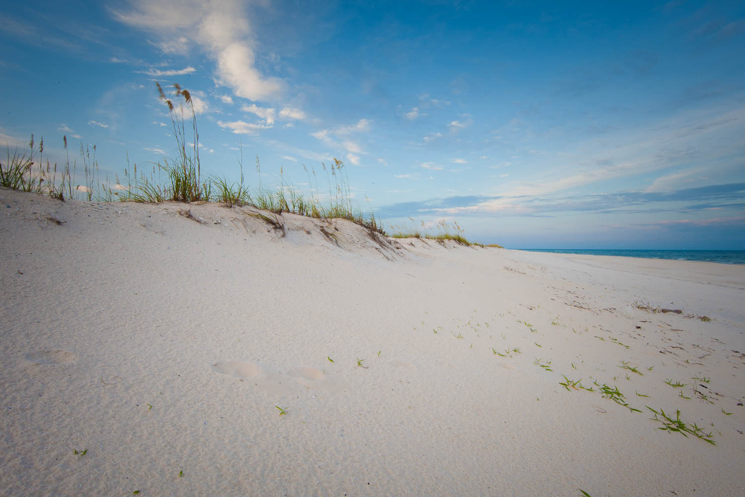 Dunes on a beach at Gulf State Park in Alabama. Image: Outdoor Alabama/Billy Pope