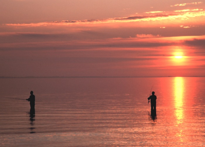 Fishing in the Gulf of Mexico
