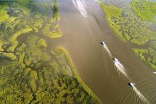 RESCHEDULED: Louisiana Trustee Implementation Group Annual Public Meeting Webinar