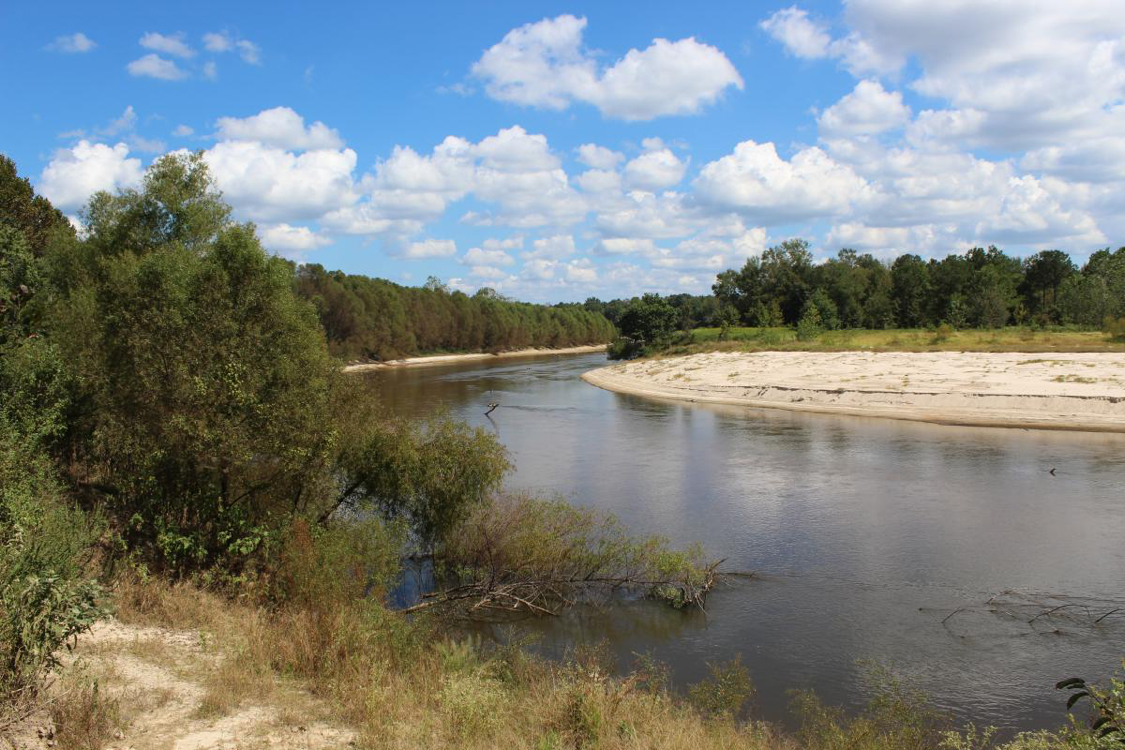 The sandy banks of the Upper Pascagoula river.