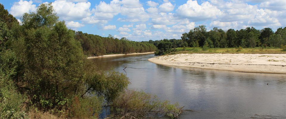 Funding Available to Help Improve Upper Pascagoula and Mississippi Coastal Water Quality